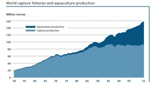 The State of World Fisheries and Aquaculture 2014 - Source: United Nations