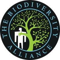 The BA logo